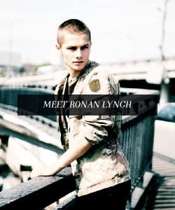 """""""[Ronan] was brother to a liar and brother to an angel, son of a dream and son of a dreamer… [He was] molten eyes and a smile made for war."""" Image courtesy of Yomi. Used with permission."""